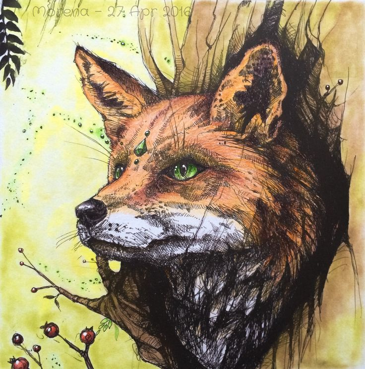 25 best Po drugiej stronie snu images on Pinterest Coloring books - best of coloring page of a red fox