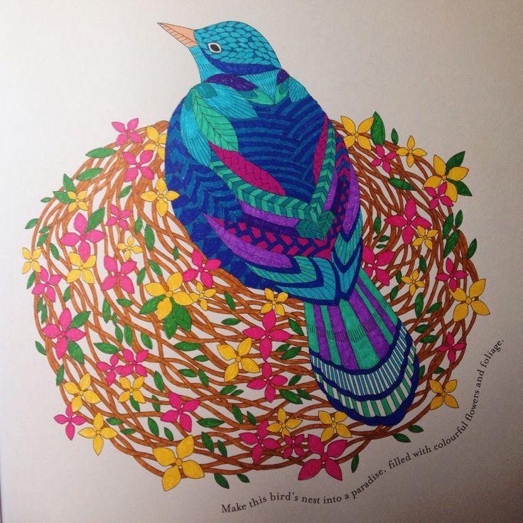 Birds Nest From Millie Marottas Tropical Wonderland