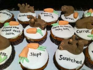 Diary of a Wombat cupcakes