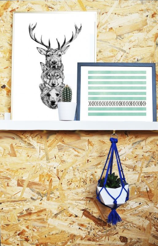 imakin DIY-kit Hanging Planter