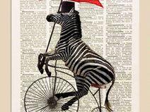 Zebra, bicicletta,stampa,illustrazione, 29,7x 4...