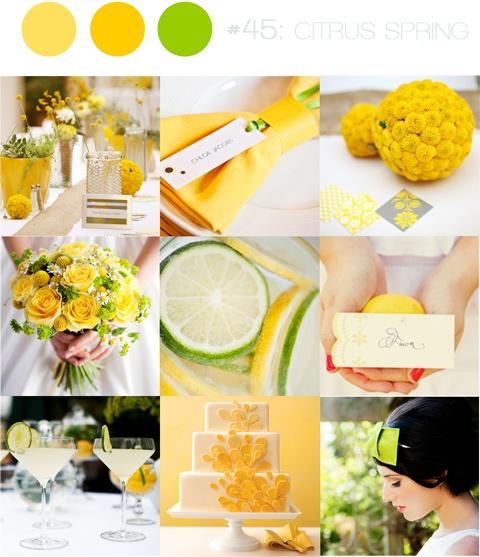 Citrus Celebrations