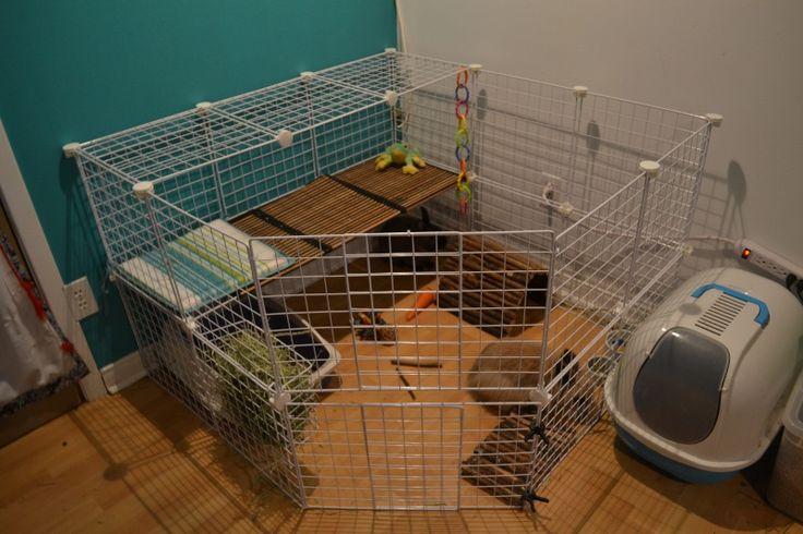 Les 25 meilleures id es de la cat gorie cage de lapin sur for Avoir un lapin a la maison