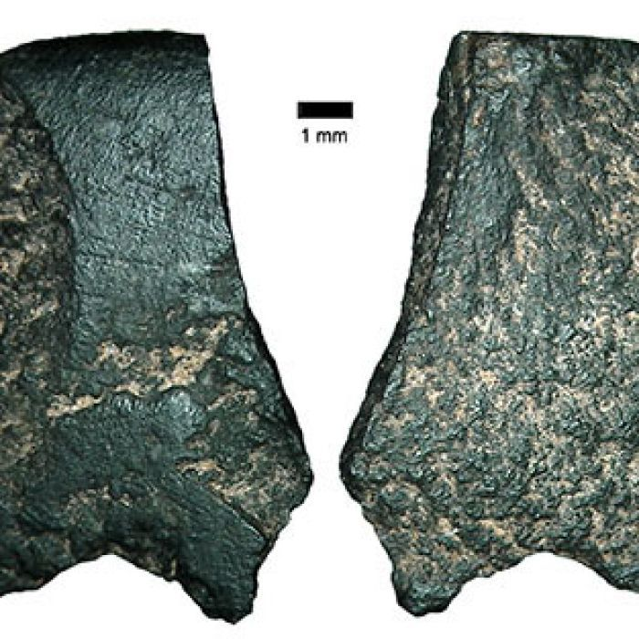 A fragment of the world's oldest known ground-edge axe is found in the remote Kimberley region of northern Australia.