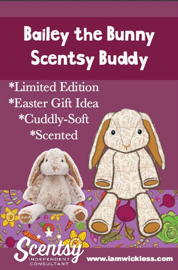 Scentsy Buddies are cuddly-soft and smell amazing with a fragrance of your choice. Sensory imaginative fun!
