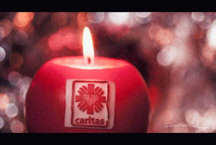 https://flic.kr/p/BWpfBW | Caritas means Love | Another one taken for Macro Mondays Group. Topic: the Beauty of bokeh. HMM !