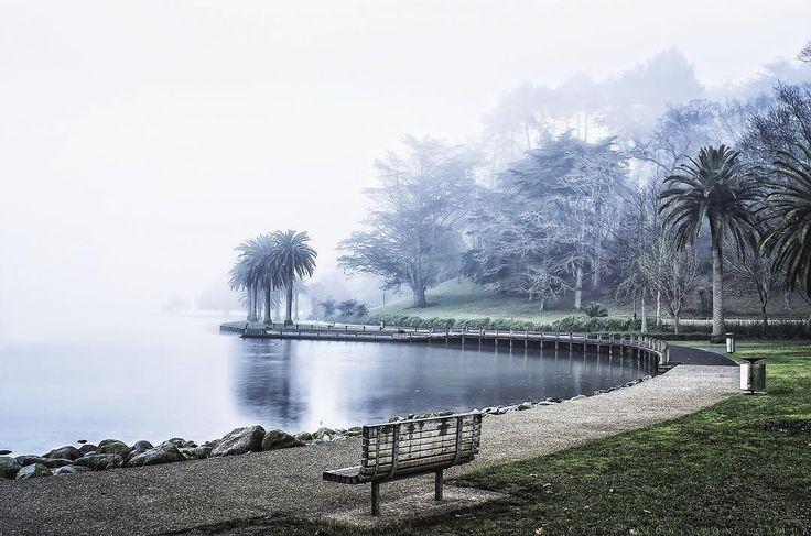 Foggy snap at lake Rotoroa,Hamilton NZ. #nzimagery #benro #pentax #k5 #tamron #tamron1750mm #singleexposure #dynamicrange #surreal #morning #lake #lovethetron #newzealand #nzphotographer #middletonjoshua #influencer #instagood #instamood #instadaily #hamiltonwaikato #waikatophotographer #benrotakeover