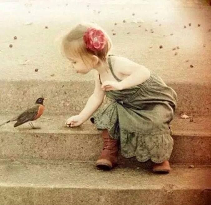 """""""Nothing is so strong as gentleness. Nothing is so gentle as real strength."""" (Ralph W. Sockman)"""