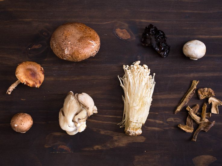 From the poisonous and obscure to the delectable and familiar, there are enough mushroom varieties out there to fill a book. Here's the essential information you need to make the most of all the fungi you can find.