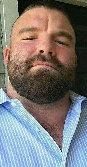 Really. And bearded bear facial gay are not