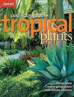 58 Best My Tropical Garden Images On Pinterest Chairs