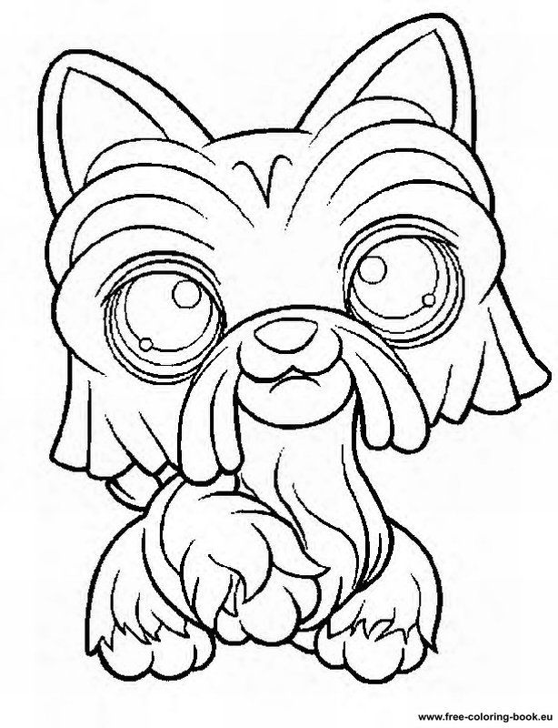 you will find coloring pages to print from littles pet shop toys which you can print yourself - Lps Coloring Pages Cocker Spaniel