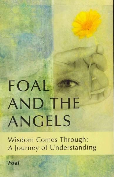 Foal and the Angels is about a journey to understand the great wisdom hidden behind life. Through a series of dreams and insightful messages that provide Foal with some pretty intensive lessons, the m