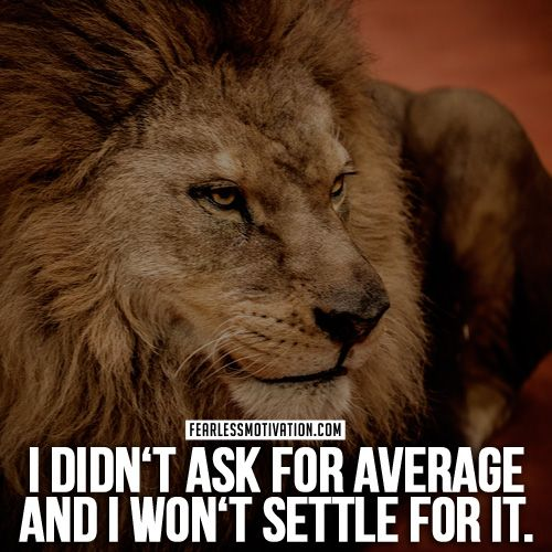 Developing Strength Motivational Quote: 43 Best LION QUOTES & Motivational Pictures