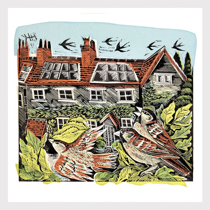 Angela Harding, sparrows