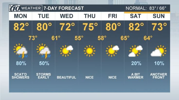 Forecast: Sweater weather heading Tampa Bay's way http://www.tampabay.com/news/weather/forecast-break-out-those-sweaters-tampa-bay-as-cooler-weather-just-a-day/2342027
