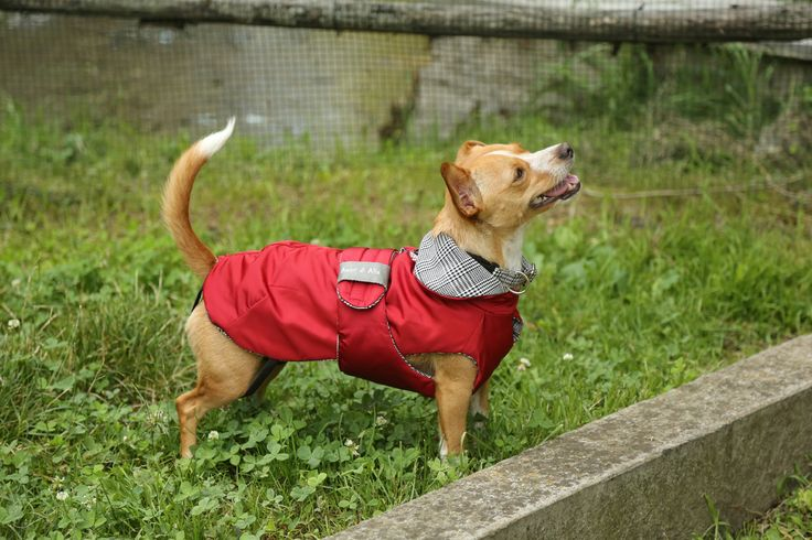 Red Padded Raincoat with Black&White wool Prince of Wales fabric