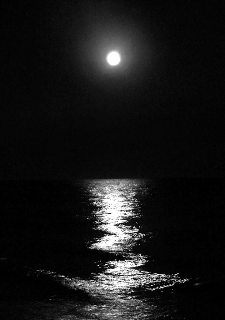 Moonlight On The Beach Scratchboard In 2019