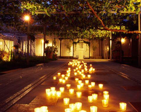 夜の ぶどうの木 の下での結婚式♪