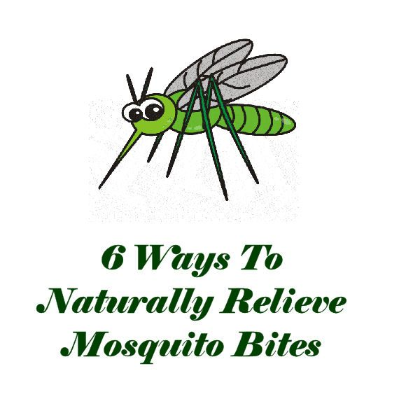 6 Ways To Naturally Relieve Mosquito Bites