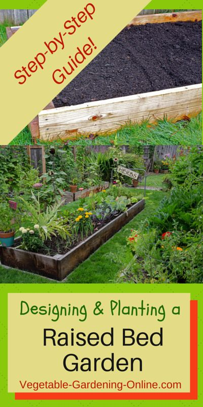 Planting a vegetable garden for beginners how when and for Vegetable garden box layout