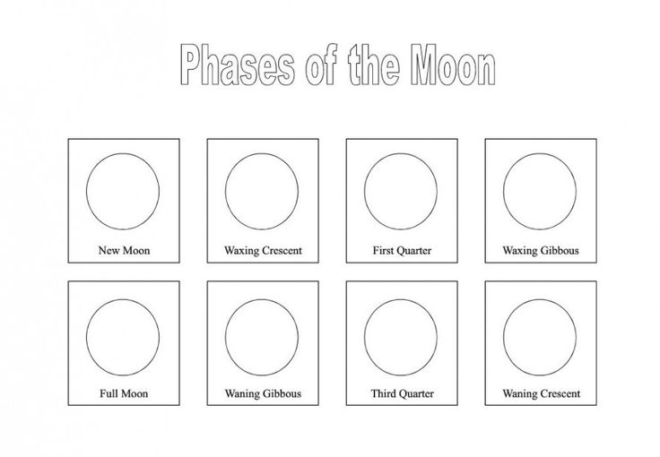 Moon Phases Worksheet Printable Free Printables Phases Of The