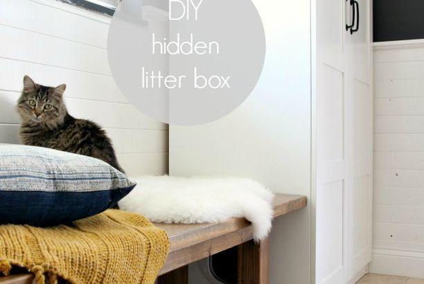 DIY Hidden Litter Box