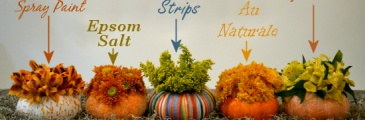 "Mini pumpkin ""vases"" decorated five different ways."