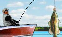 Pêche en délire - Jouez gratuitement à des jeux en ligne sur Jeux.fr