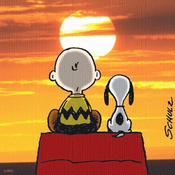 """""""Luz do sol / Que a folha traga e traduz / Em verde novo / Em folha, em graça / Em vida, em força, em luz..."""" ( Trecho da música: Luz do Sol - Caetano Veloso )"""