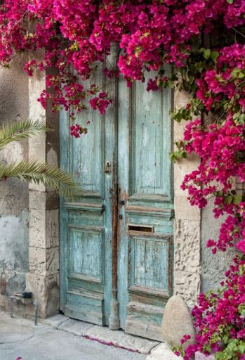 Bougainvillea ~ Aqua and Pink
