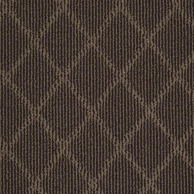 Carpeting Style You Ccp Color Browning Flooring Shaw Carpet Samples Deep