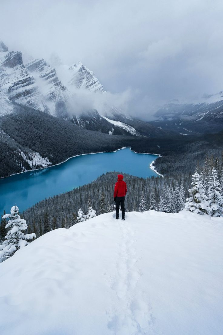 Peyto Lake, California