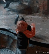 hilarious comedy gif