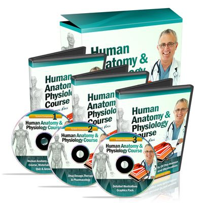 ø The #1 Human Anatomy and Physiology Course ø | Learn About The Human Body With Illustrations and Pictures ø