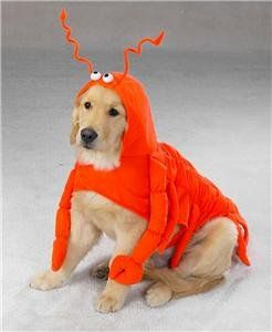 Pet Costume Lobster Paws . ipawz.com