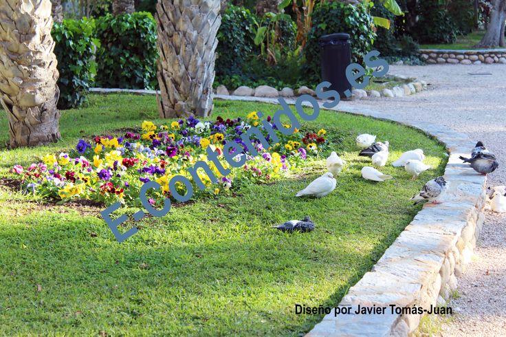 Proporciona consejos sobre las flores en la jardinería mediante marketing de contenidos.