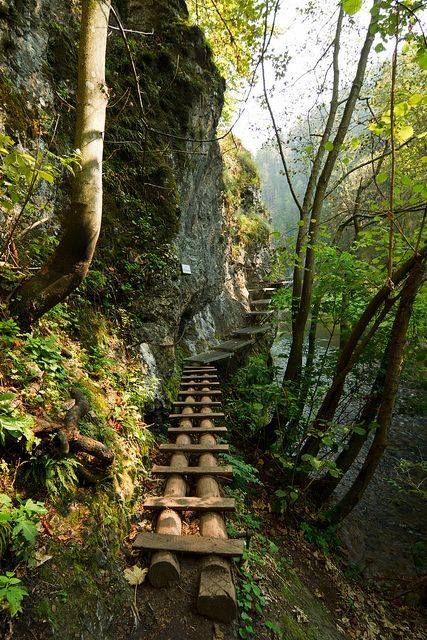 Canyon Path, Slovakia photo via Igor