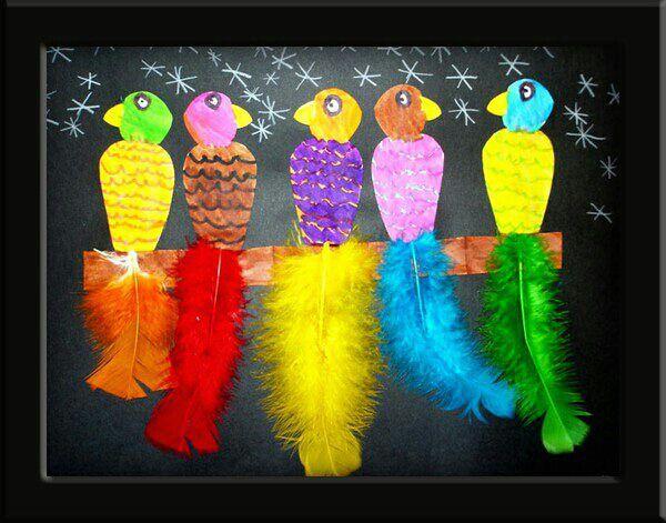 parrots collage
