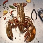Food Finish – edible spray paint turn your food into metallic bites