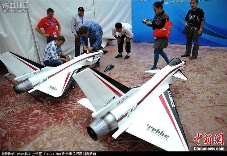 J-10無人機(歼十无人机)。中国密雲県で開催された第二回国際無人飛行機創造グランプリ(2013年)なるイベントにて参加したRC機。中国のJ-10戦闘機を模したもので個人の愛好家によるものとのこと。見事な機動を見せていたとされる。