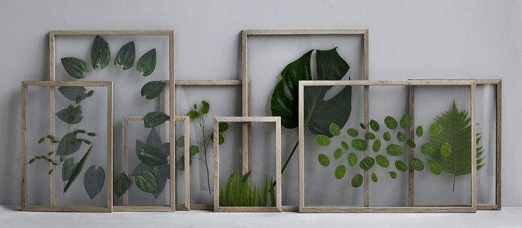 DIY Gift Idea // Minimalist Framed Floating Leaves & Flowers | ...love Maegan | Bloglovin'