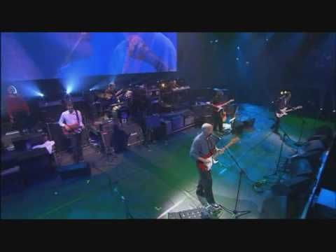 DAVID GILMOUR - SORROW - FENDER 50th