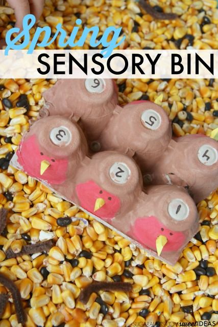 kids will love this spring robin sensory bin with corn filler
