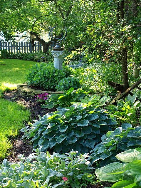 Hostas in verschiedenen Grün-Schattierungen. Sie blühen meist im Sommer an hohen Stängeln in weiß, rosa oder violett.