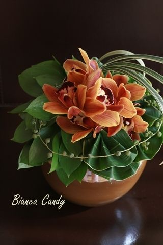Modern Hawaiian style - Flowers of late summer  - cymbidium brown, Dracaena, miscanthus, green necklace, Rusukasu.