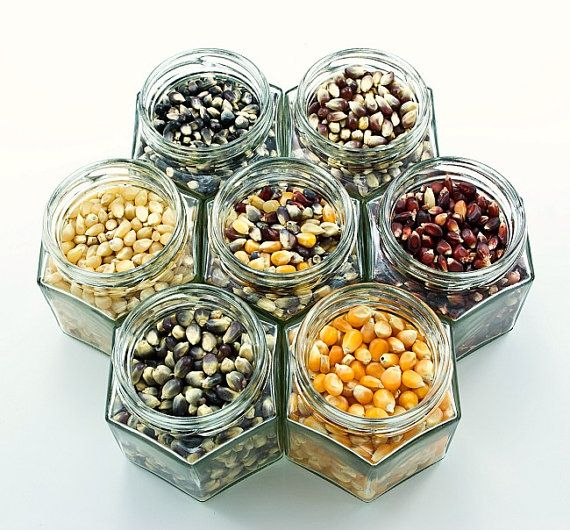 Gourmet popcorn kit - colored kernels - snack fans, connoisseurs alike - recipe, popcorn cones, gift box included.
