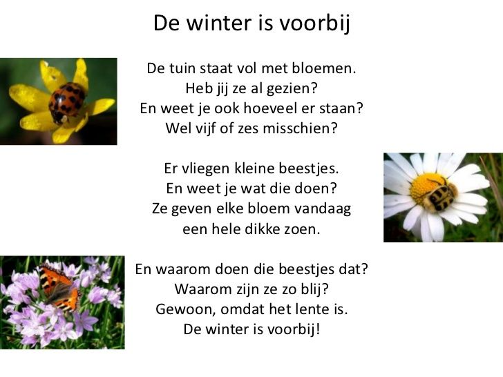 * Versje: De winter is voorbij!