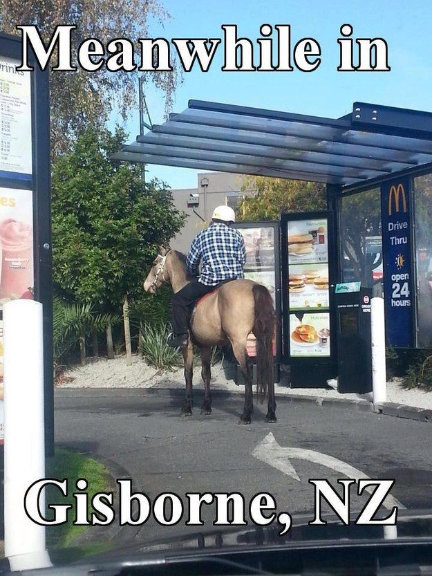 """And the time they gave a new meaning to the term """"drive through."""" 