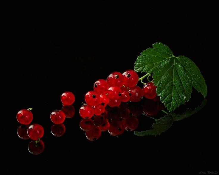 Картинки с ягодами на черном фоне
